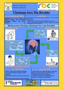Figure 3The poster of sensitization produced with RBC